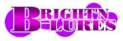 ブライトンルアーズ[BRIGHT'N LURES]公式サイト